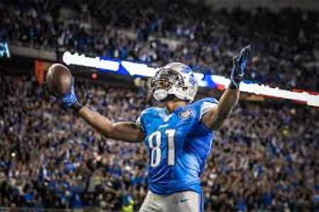 Who is this man? Calvin Johnson was invisible in Lions' loss.detroitlions.com