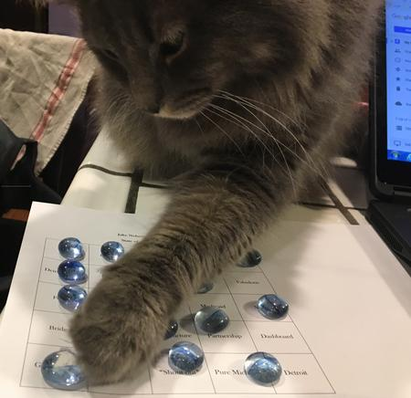 D-Cat, Svoboda's feline, messes with a bingo card during the 2017 State of the State speech.Sandra Svoboda/WDET