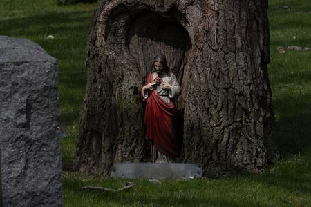 A statue of Jesus sits inside a tree overlooking several graves at Woodmere Cemetery in Southwest Detroit.Taken by Erik Paul Howard for WDET
