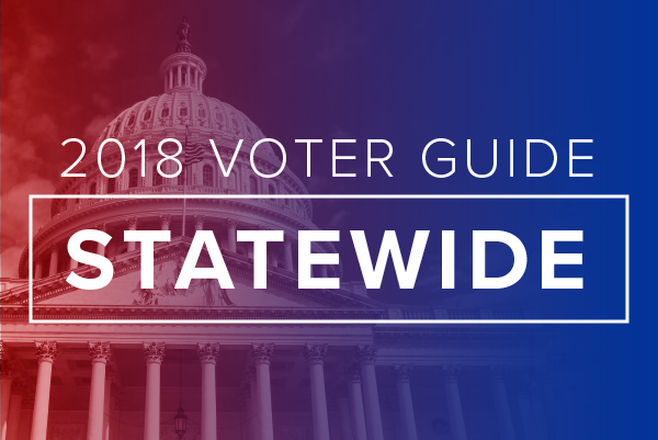 2018 Voter Guide: Statewide Races | WDET